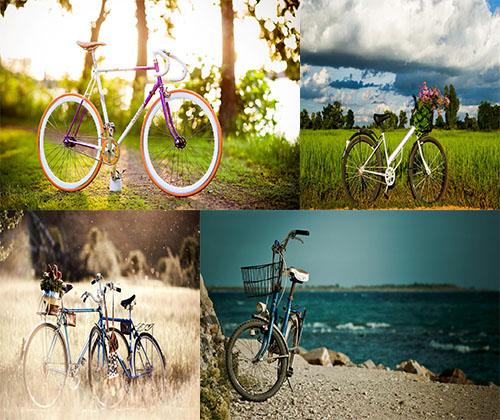جدیدترین و بهترین عکس های دوچرخه بلا کیفیت بالا