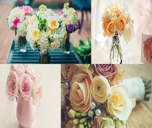 عکس های بسیار زیبا از قشنگترین گل ها