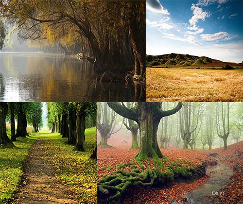 جدیدترین و قشنگترین عکس ها از دل طبیعت