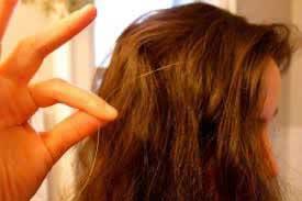 کندن موی سفید باعث افزایش آن نمیشود