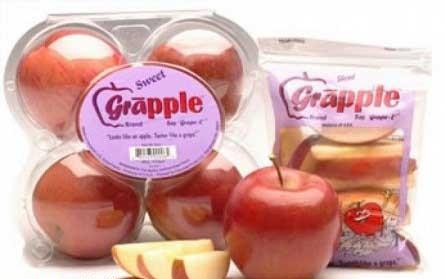 سیب هایی با طعم انگور! +عکس