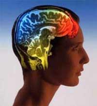 روش های برای تقویت حافظه