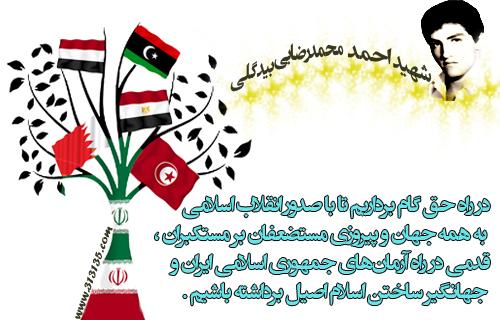 شهید احمد محمد رضایى بیدگلى