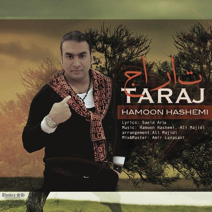 دانلود آهنگ جدید هامون هاشمی به نام تاراج
