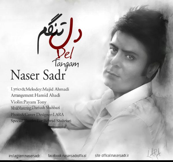 دانلود آهنگ جدید ناصر صدر به نام دلتنگم
