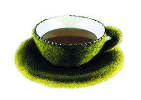 فوايد و مضرات چاي سبز