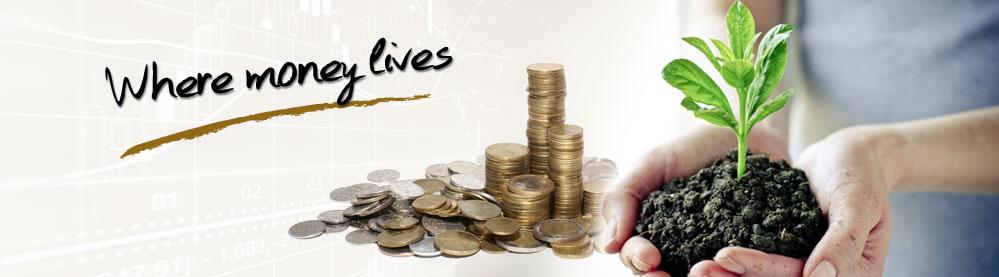 صندوقهای سرمایه گذاری مشترک