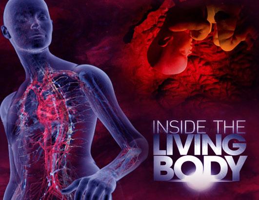 اسرار بدن انسان (مستند)
