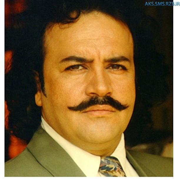 عکس های جديد محمدرضاشریفی نیا سال 93
