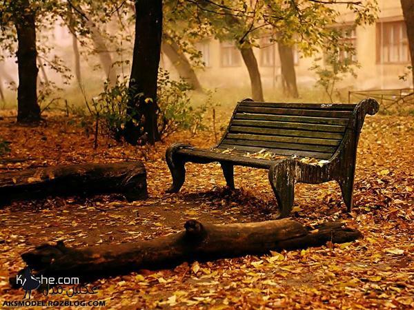 عکس های زیبا از فصل پاییز