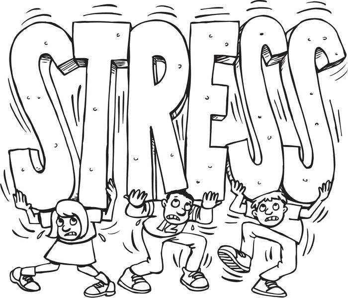 ۵ خوراکی برای کاهش استرس