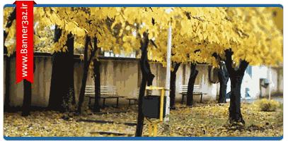 والپیپر پاییز در زنجان,عکس هایی از پاییز در شهر زنجان,والپیپرHDاز پاییز ایران,HD wallpapers from iran in autumn,دانلود والپیپرهای پاییز در زنجان,دانلود والپیپرHD,دانلود wallpaper HD