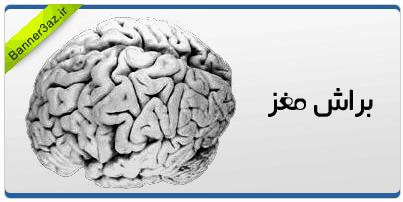براش مغز