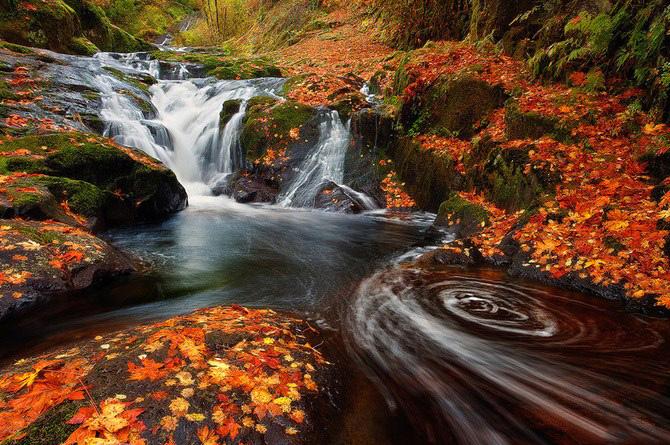 تصاویر زیبا و جذاب از طبیعت!
