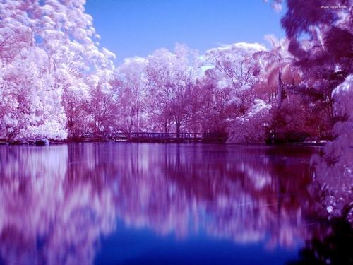 تصاویر تماشایی از طبیعت زیبا!