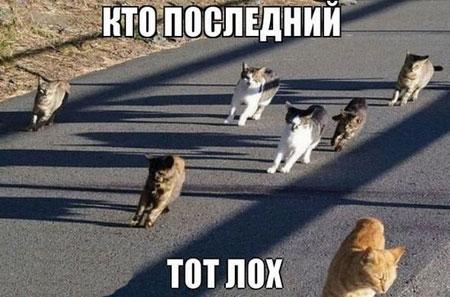 عکس نوشته های طنز و خنده دار!