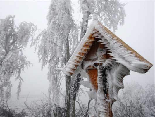 تصاویر دیدنی و نفس گیر زمستانی!