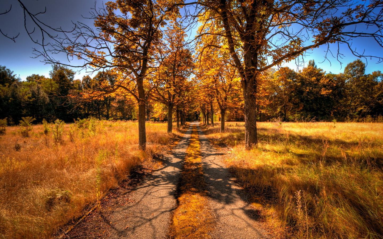 عکس هایی از فصل پاییز