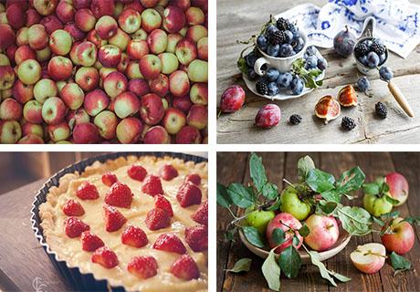 عکس های میوه ها