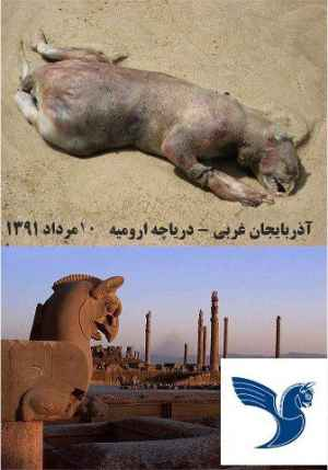 کشف لاشه ی موجود افسانه ای تخت جمشید گریفن در دریاچه ارومیه! | بست بازBestBaz