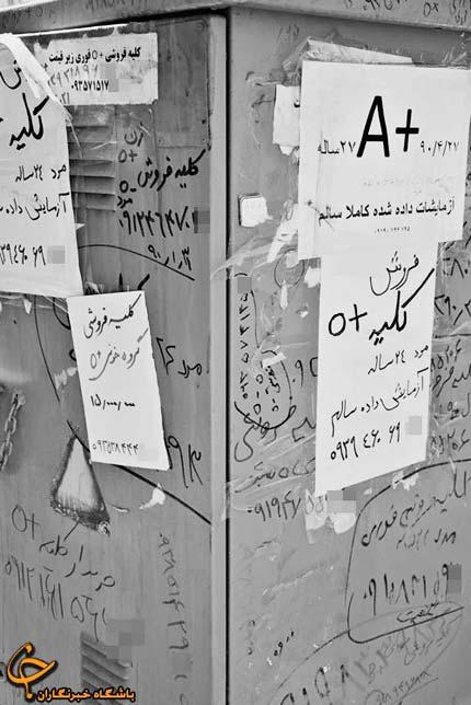 بازار سیاه فروش کلیه ایرانیان به خارجیان