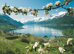 عکس هایی از مناظر دیدنی زیباترین آبدره جهان در نروژ