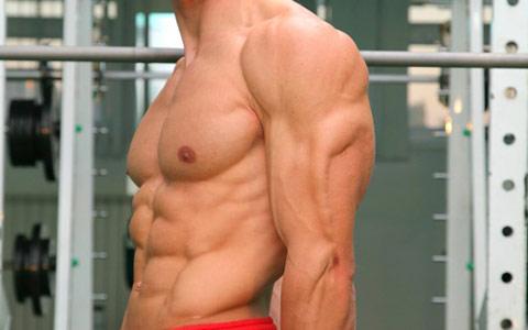 ۳ حرکت برای تقویت عضلات پشت بازو در منزل