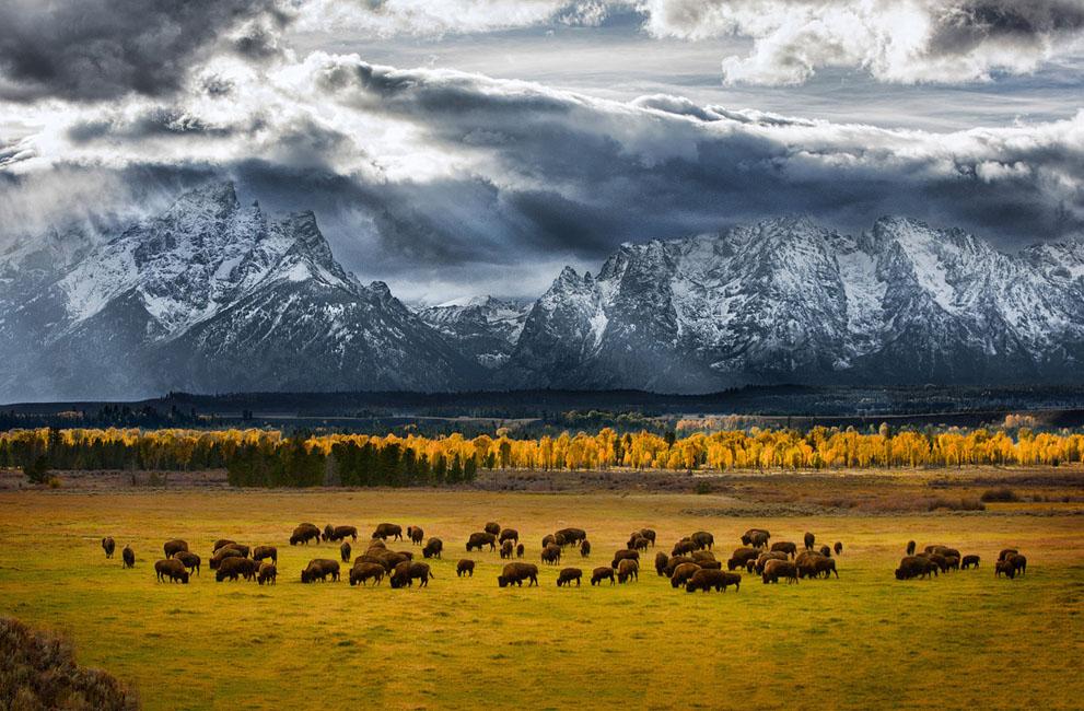 برترین عکس های جنوگرافیک (national geographic)
