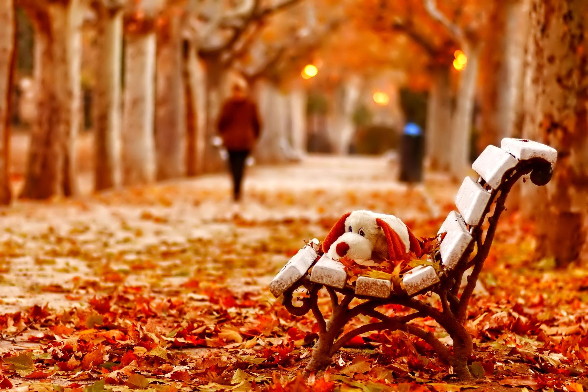 رومانتیک ترین نوشته های عاشقانه پاییز