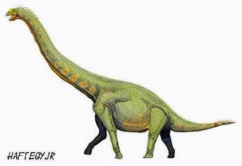 بلندترین دایناسور