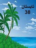 دانلود کتاب تابستان 38