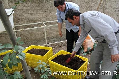 پرورش کرم خاکی و تولید ورمی کمپوست
