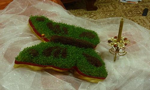 سبزه ی هفت سین
