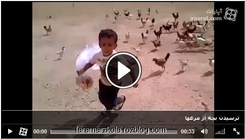 کلیپ ترسیدن بچه از مرغ ها ؛ طنز