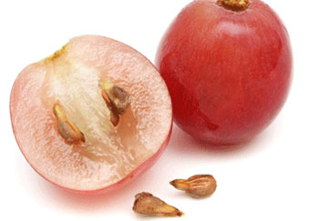 خواص هسته میوه ها, هسته میوه