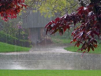 دلنوشته های بارانی