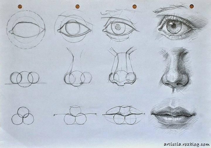 Image result for آموزش طراحی چهره