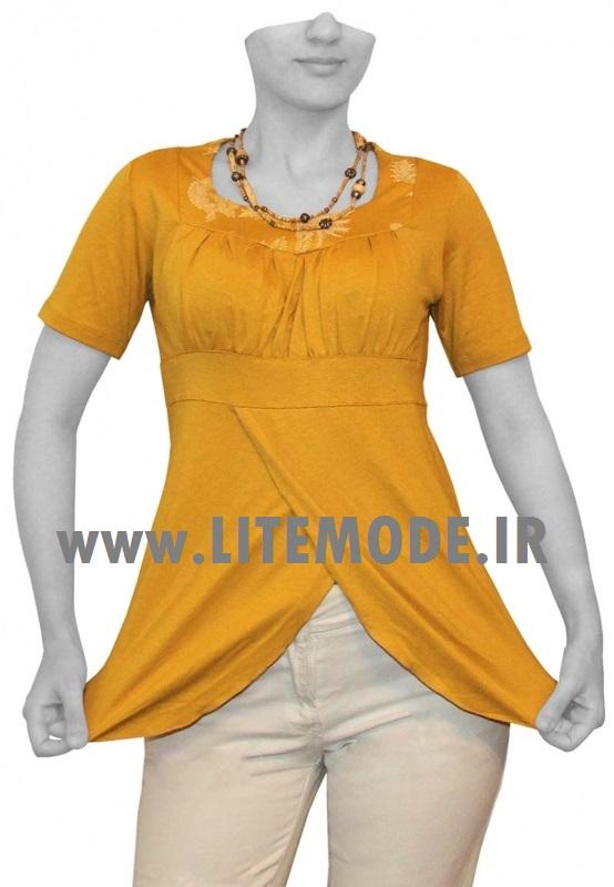 http://rozup.ir/up/golimode/Pictures/popi/1www.litemode.ir.jpg