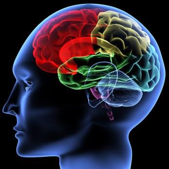 تست آلزایمر و هوش