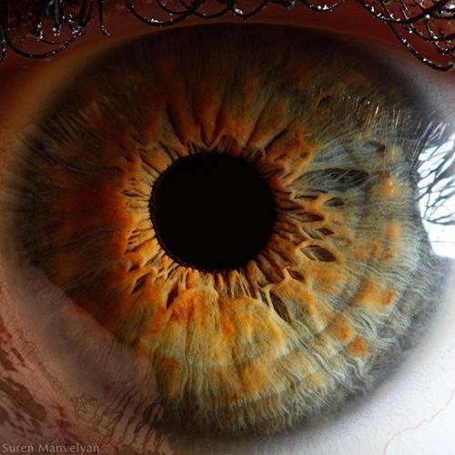 چشمت را زل زدنی تصویر کن