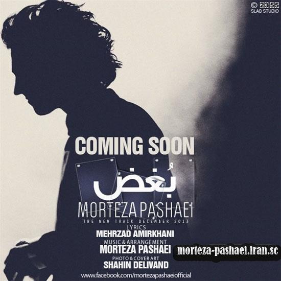 www.morteza-pashaei.iran.sc