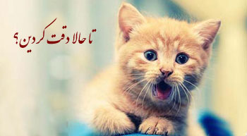 طنز تا حالا دقت کردین !؟-جدید مهر 92