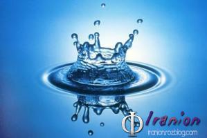 هیولاهای ساکن در یک قطره آب! + عکس