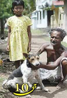 ازدواج اجباری دختر ۹ ساله با یک سگ   عکس
