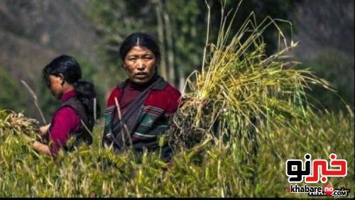 ازدواج و زندگی همزمان و عجیب این زن نپالی با دو برادر