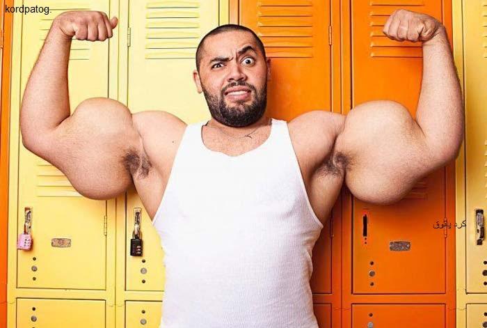 بزرگترین عضله در جهان