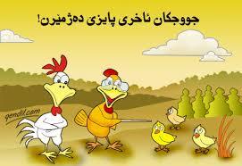 ضرب المثل های باحال  کردی (به زبان کردی نوشته شده) با معنی فارسی