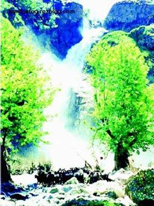 هم آوایی کوه ، جنگل و رود در طبیعت زیبای سردشت