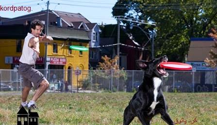 رکورد گینس گرفتن دیسک توسط سگ