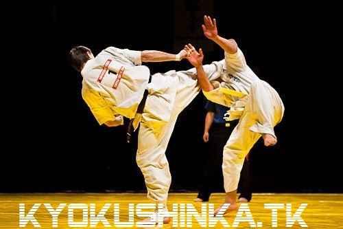 مبارزه کیوکوشین